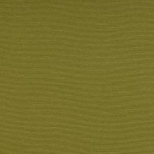 Silvertex celery