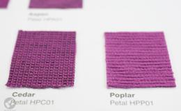 o21/HPP01